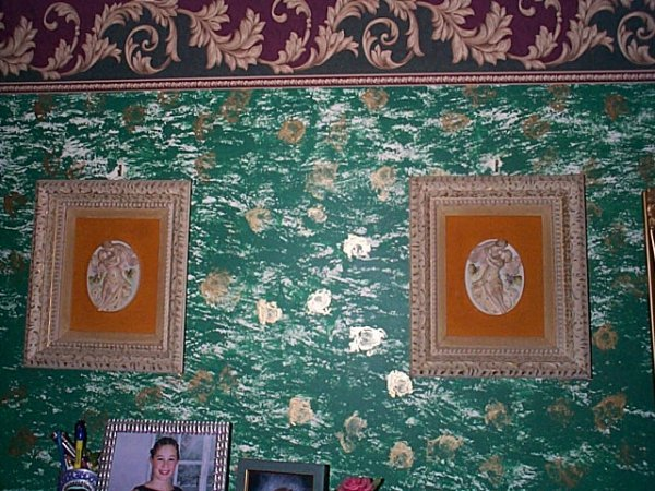 208: Pair of framed porcelain plaques depicting a woman