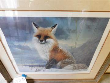 Lithograph of a Fox