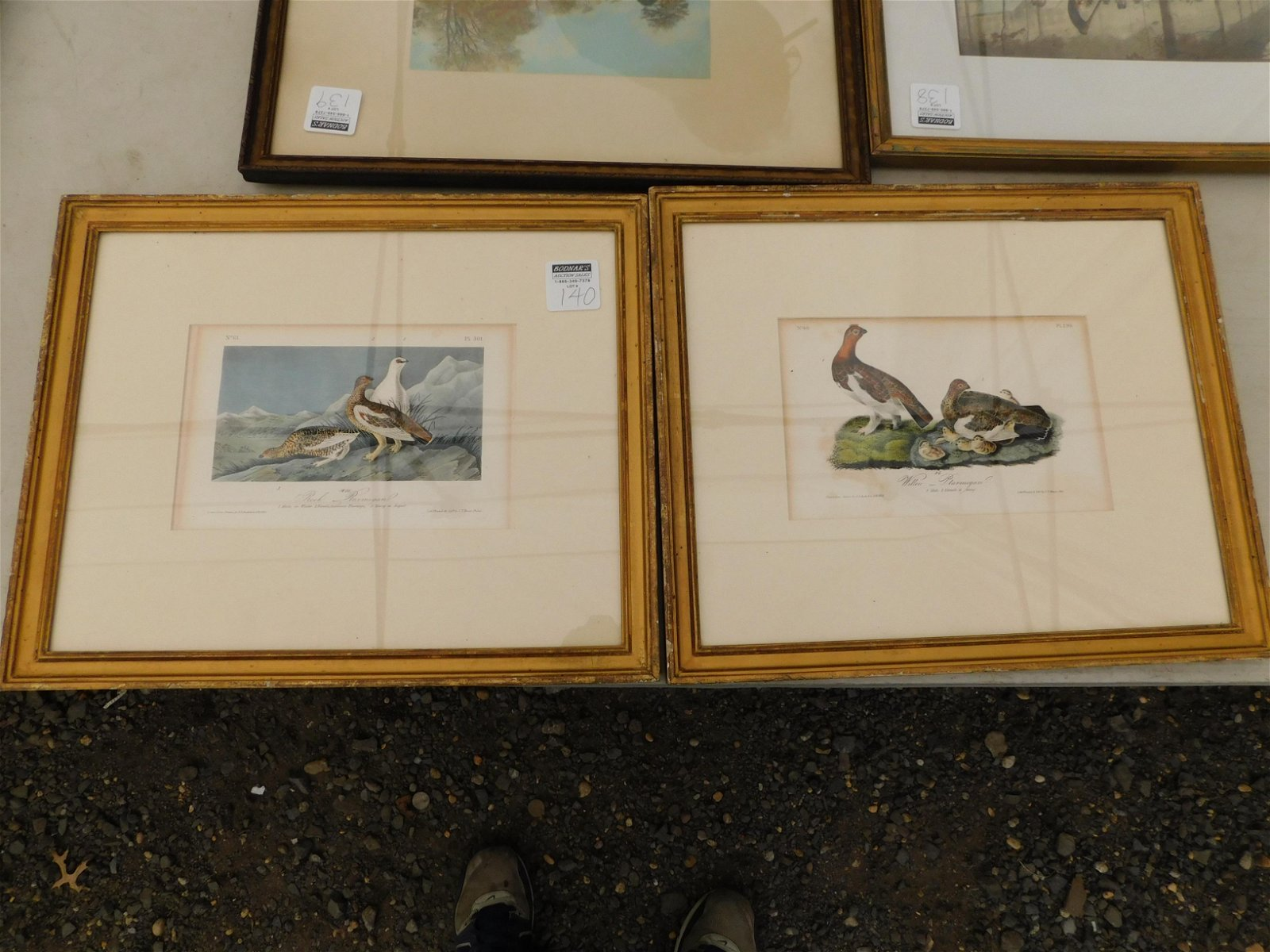 Lot of 2 Bird Etchings