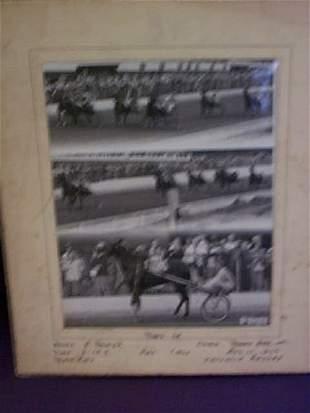 Horse racing photograph signed Bernard Studio, sig
