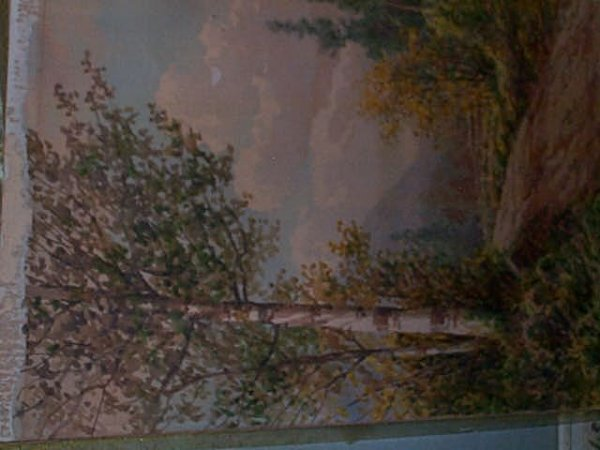 962: Early 20th century watercolor a birch tree on a di