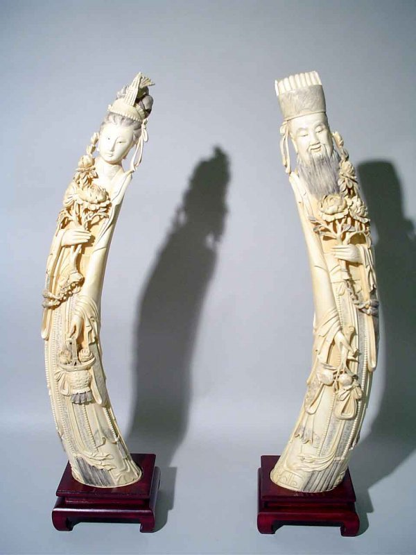 575: PAIR OF LARGE WELL-CARVED CHINESE IVORY TUSKS MODE