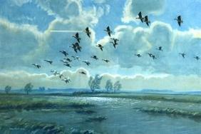 PETER SCOTT (1945), A Framed Print, Geese in Flight. 1