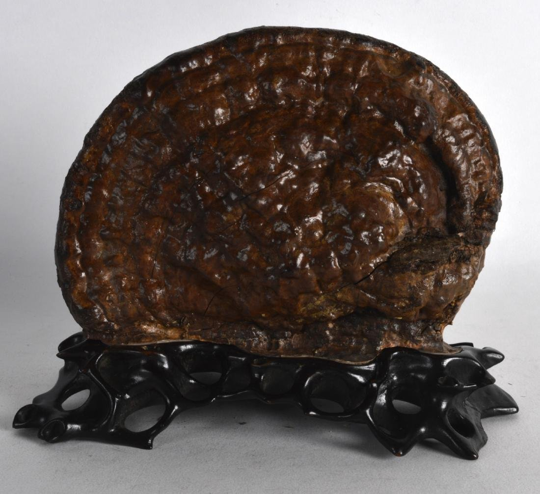 AN ANTIQUE CHINESE CARVED SCHOLARS FUNGUS upon a fitted
