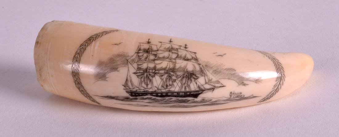 A GOOD 19TH CENTURY CARVED SCRIMSHAW TOOTH well etched