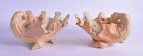 A PAIR OF ROYAL WORCESTER BLUSH IVORY SHELL SHAPED
