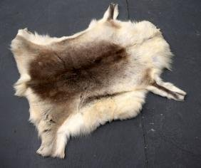 A WOLF SKIN HIDE. 115 cm wide.