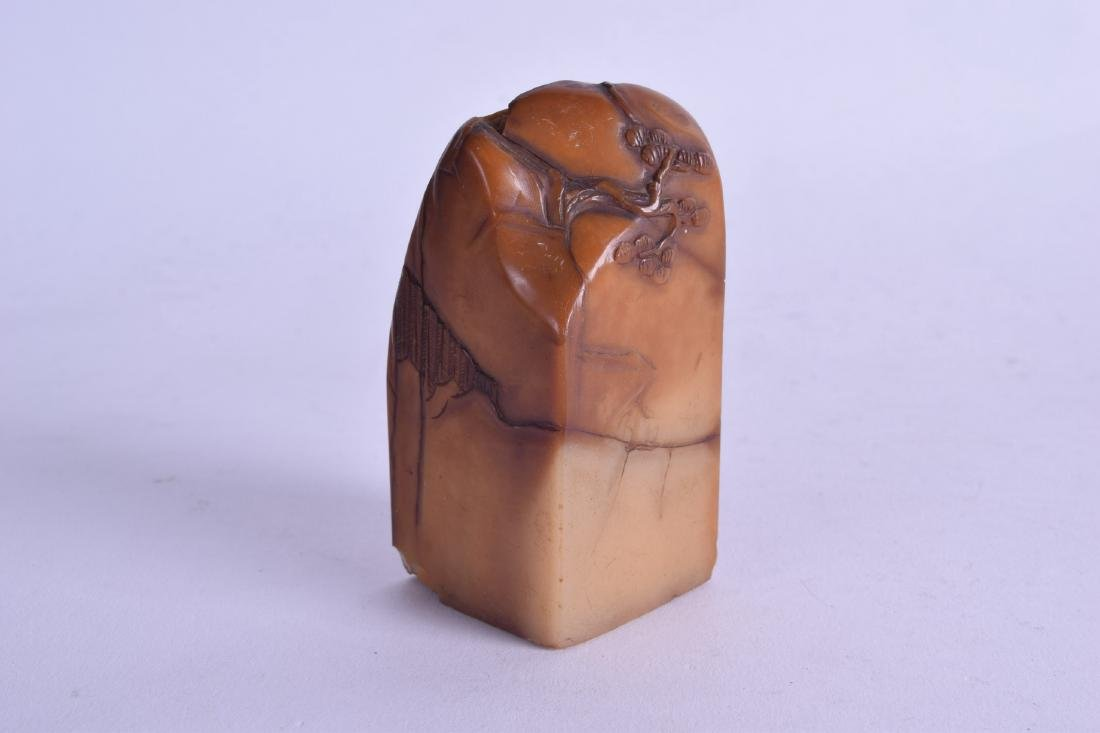 AN 18TH CENTURY CHINESE CARVED AMBER SOAPSTONE SEAL - 2
