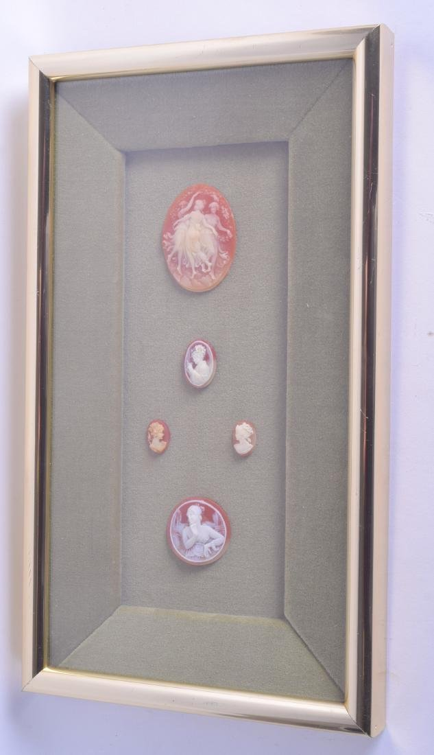 A SET OF FIVE FRAMED LATE 19TH CENTURY CARVED CAMEOS.