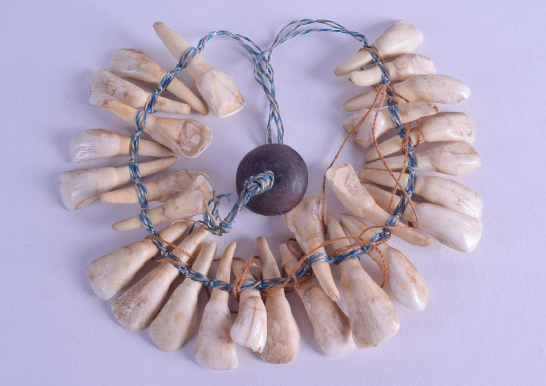 AN UNUSUAL TRIBAL CARVED TOOTH HUNTERS NECKLACE. 40 cm