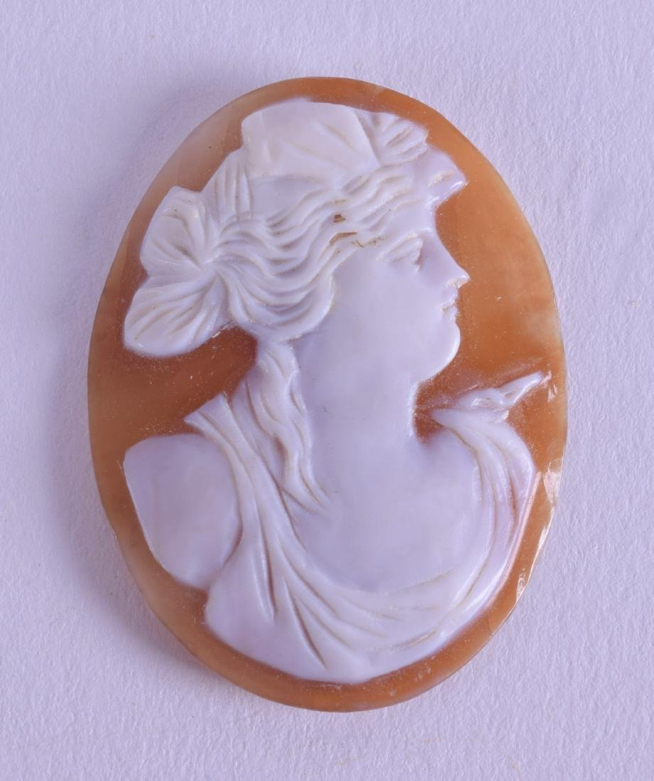 AN ANTIQUE BOXED CLASSICAL CAMEO. 2.5 cm x 3.5 cm.