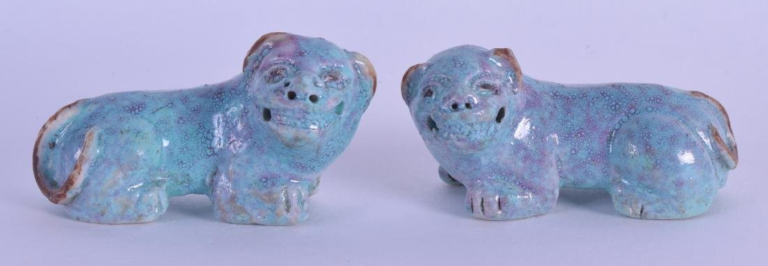 A RARE PAIR OF 18TH CENTURY CHINESE ROBINS EGG