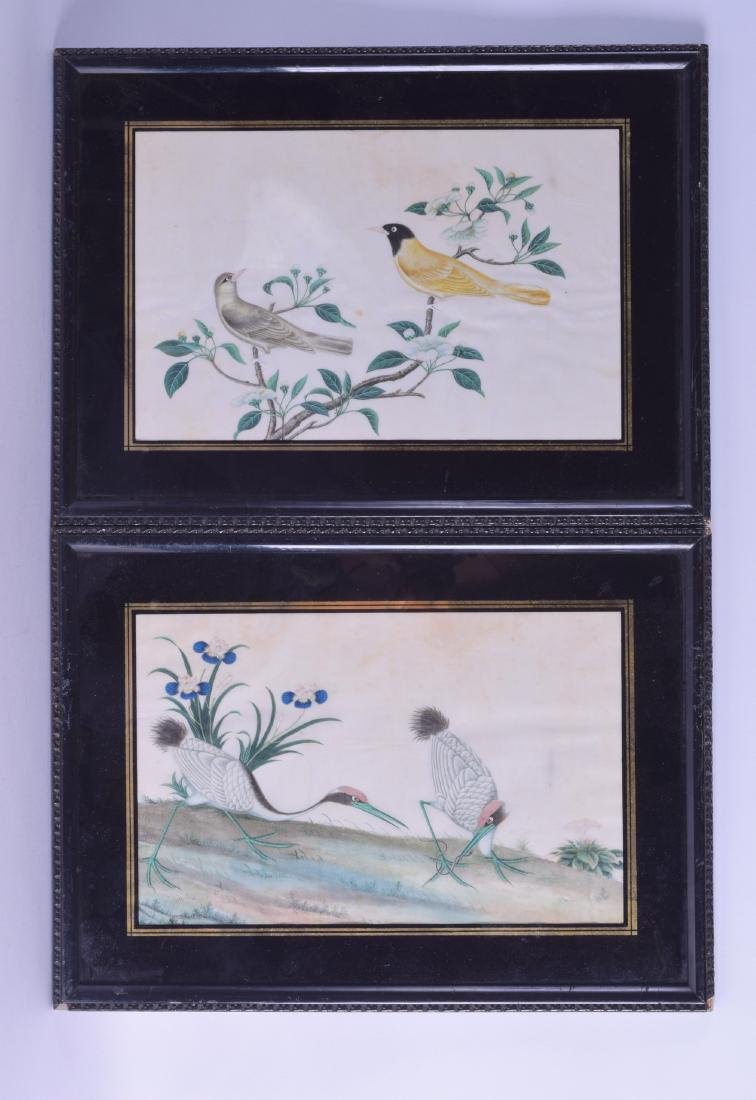 A PAIR OF 19TH CENTURY CHINESE FRAMED PITH PAPER