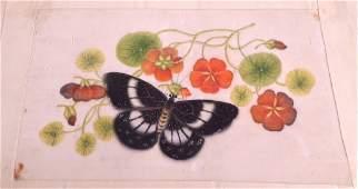 CHINESE SCHOOL 19TH CENTURY AN ALBUM OF NINE CHINESE