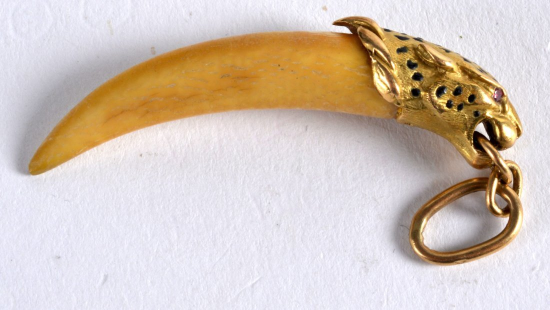 AN 18CT YELLOW GOLD MOUNTED TIGER TOOTH PENDANT. 2Ins