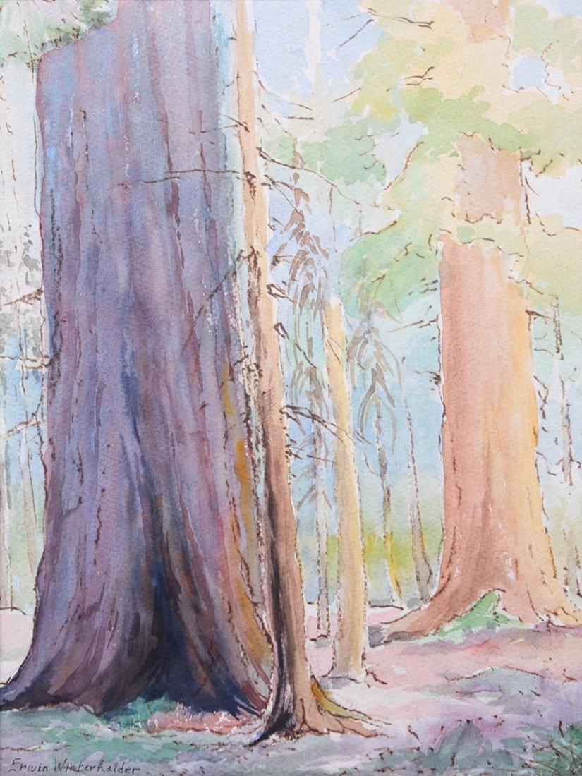 Erwin Winterharter Watercolor
