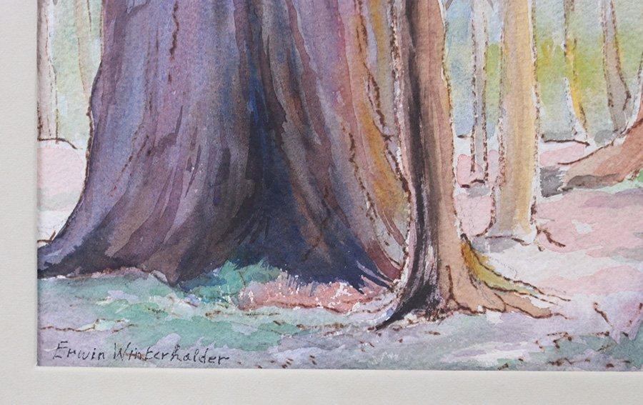 Erwin Winterharter Watercolor - 3