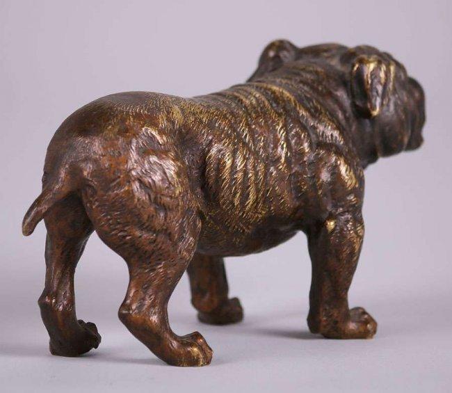 Austrian Bronze Bull Dog c1910 - 3