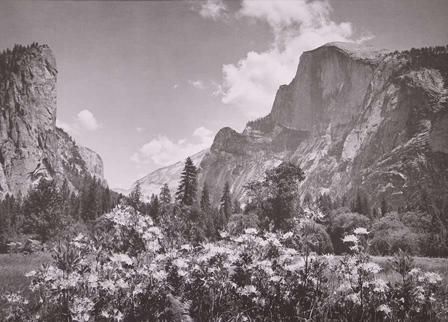 Vintage Photo of Yosemite's Half Dome c1920s