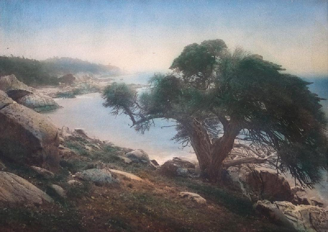 Vintage Hand-Tinted Photo Monterey Coast c1920s