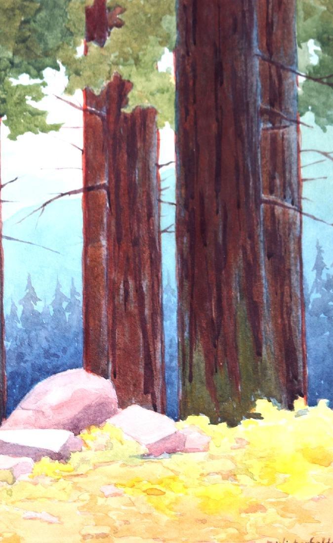Erwin Winterhalder Watercolor Redwood Trees