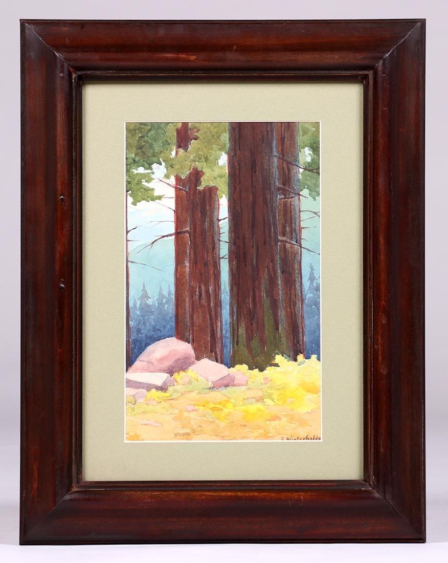 Erwin Winterhalder Watercolor Redwood Trees - 2