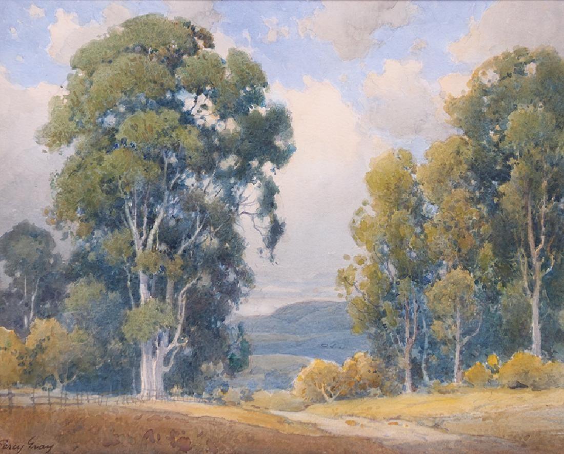 Percy Gray Watercolor California Eucalyptus Trees