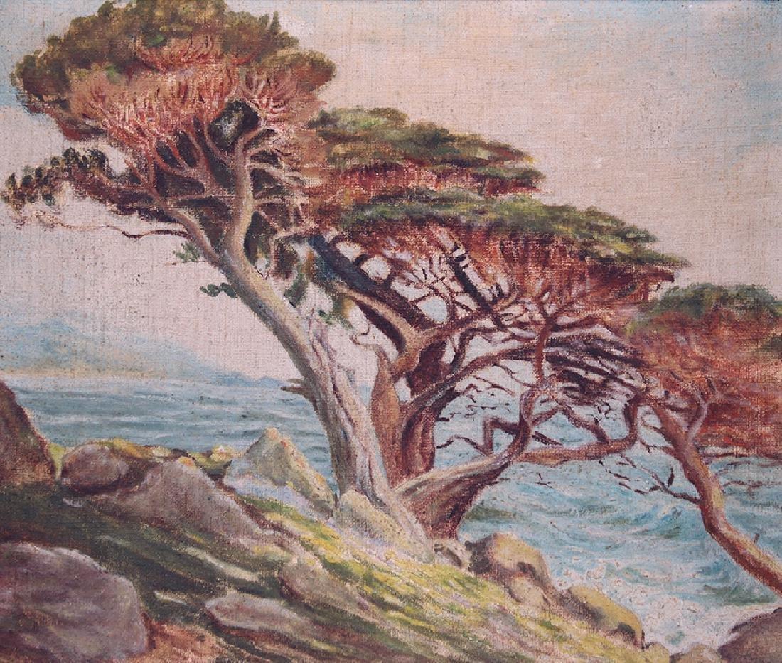 Small California Oil Painting Monterey Cypress Coastal