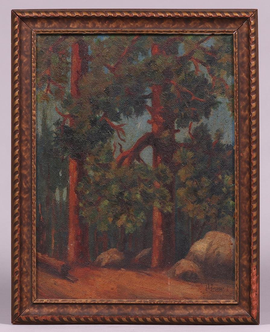 Lawrence Brunner Painting California Ponderosa Pines - 2