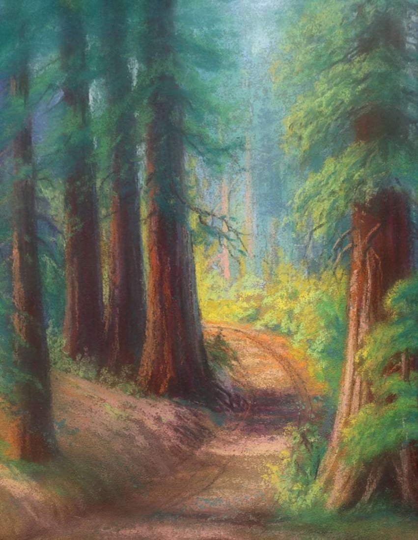 Pastel California Redwood Trees c1915
