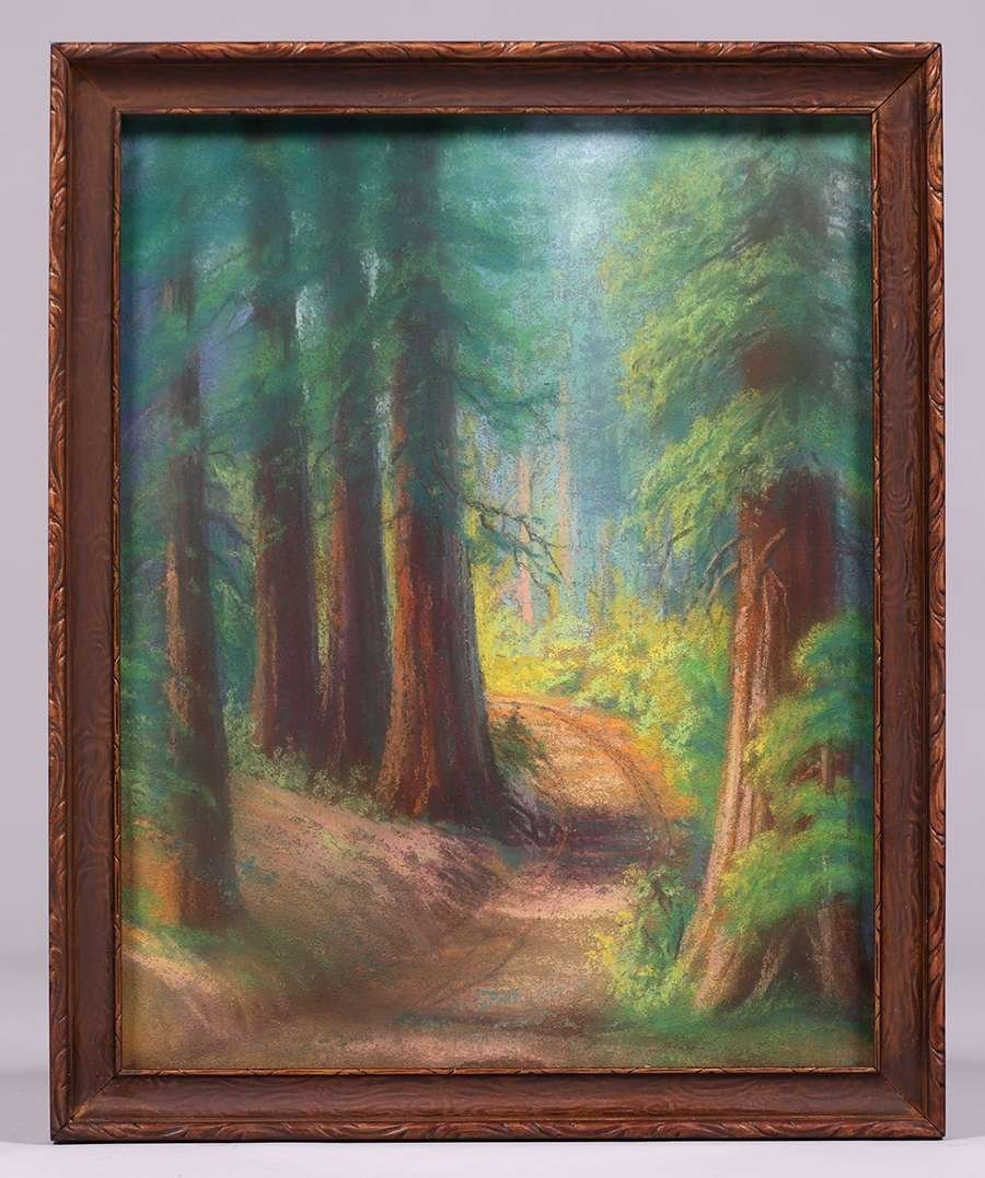 Pastel California Redwood Trees c1915 - 2