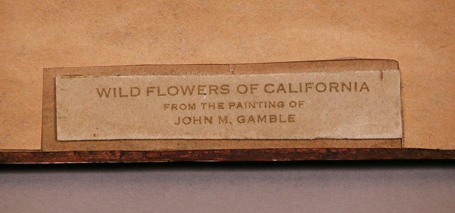Small John Gamble Vintage Hand-Tinted Print - 3