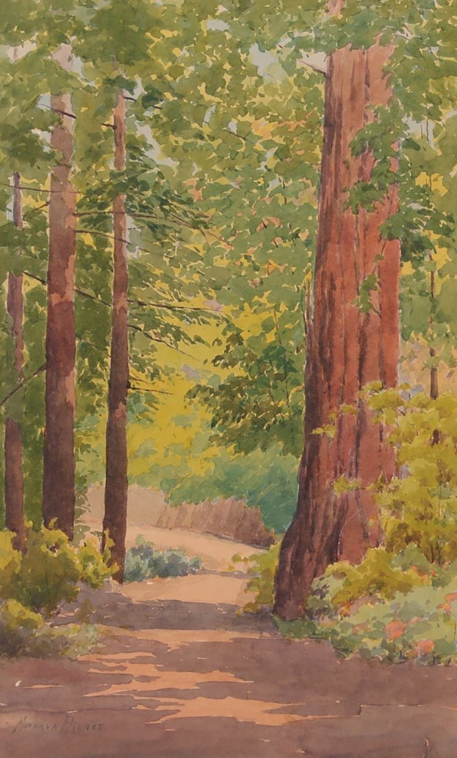 Minerva Pierce Watercolor of CA Redwood Trees