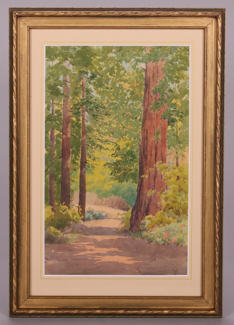 Minerva Pierce Watercolor of CA Redwood Trees - 2