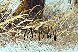 Original Acrylic Painting By Tamsan - 2