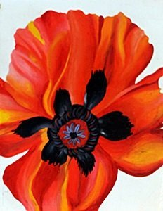 Flower 1970 - Georgia O'keeffe