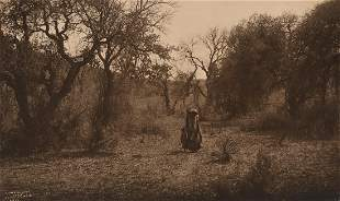 Edward Curtis, Among the Oaks - Apache (Crop Variant),