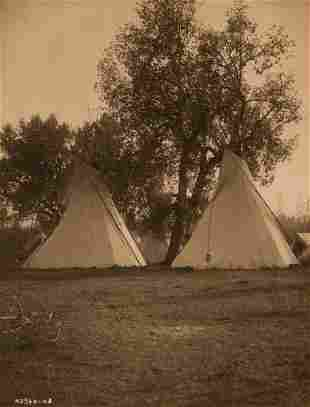 Edward Curtis, Camp Under the Cottonwoods - Crow