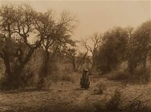 Edward Curtis, Among the Oaks - Apache, 1903