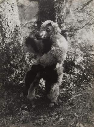 Edward Curtis, Untitled (Variant of The Bear Costume -