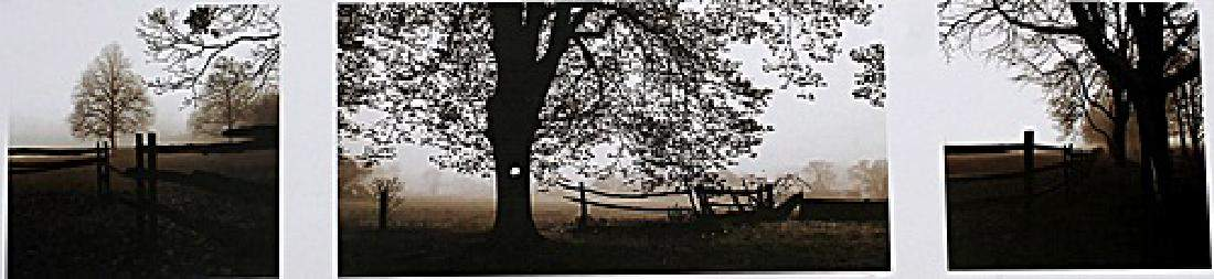 Frosted View - Harold Silverman - Lithograph