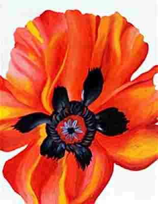 Flower 1970 Georgia O'Keeffe