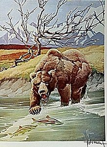 "Lithograph ""the Alaska Brown Bear"" By Artist Francis"
