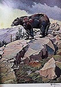 """Lithograph """"the Black Bear"""" By Artist Francis Lee"""