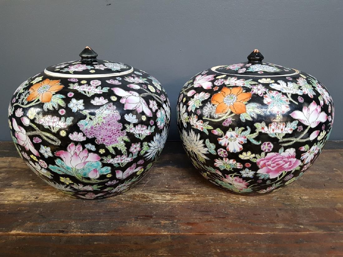 Pair of Chinese Famille Noir Ginger Jars