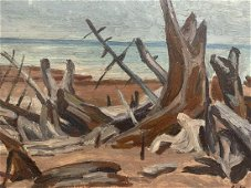 Jack Beder, Oil on Board, Beach with Driftwood