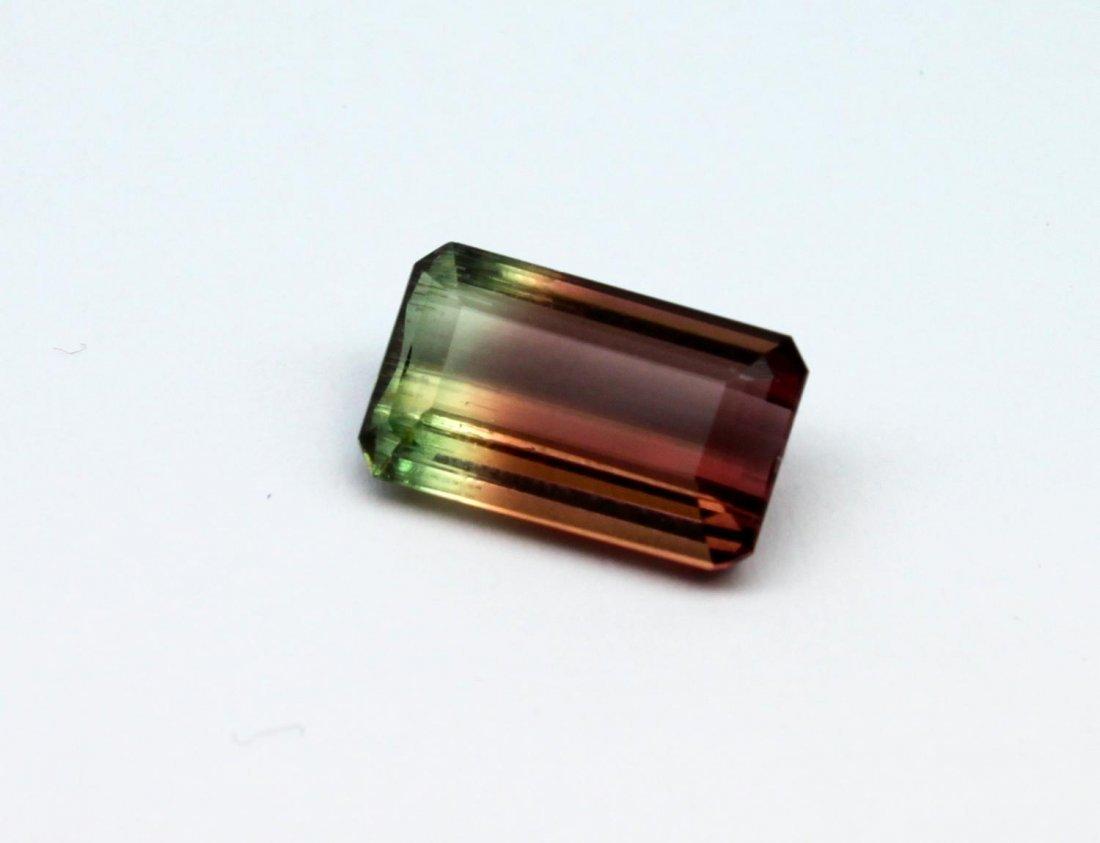 Bi-colour tourmaline