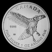 Canadian Silver 1 oz Red-Tailed Hawk 2015 (Birds of Pre