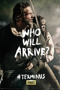 THE WALKING DEAD POSTER---Rick and Michonne---
