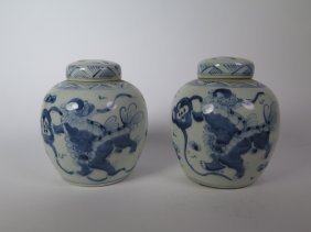 A Pair Of Blue And White Porcelain Jar 19th C